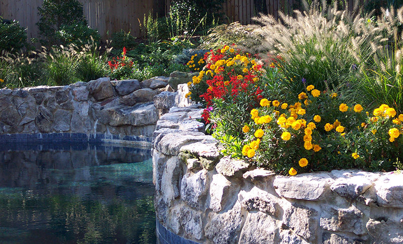 Charmant Living Colour Landscaping 6